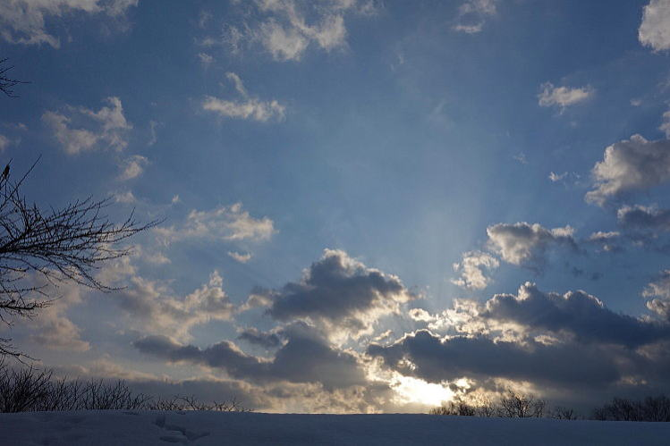 2014-0102-a-00011.jpg