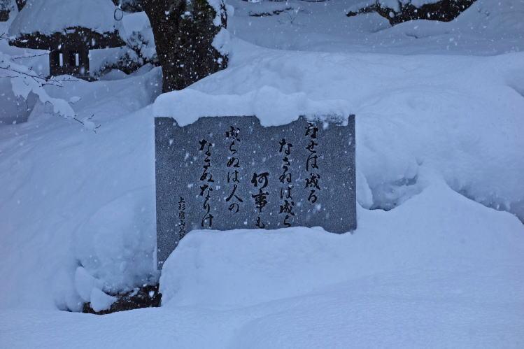 2014-0110-041.jpg
