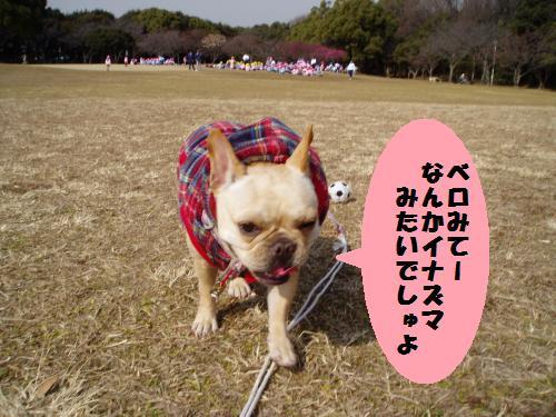 006_convert_20110208180812.jpg
