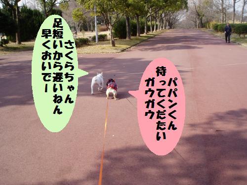 012_convert_20110208181115.jpg