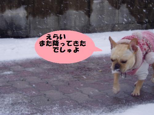 012_convert_20110212014935.jpg