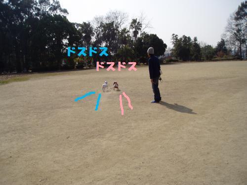 013_convert_20110208181147.jpg