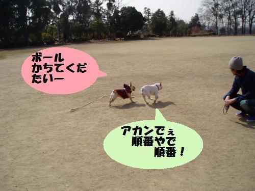 014_convert_20110208181224.jpg