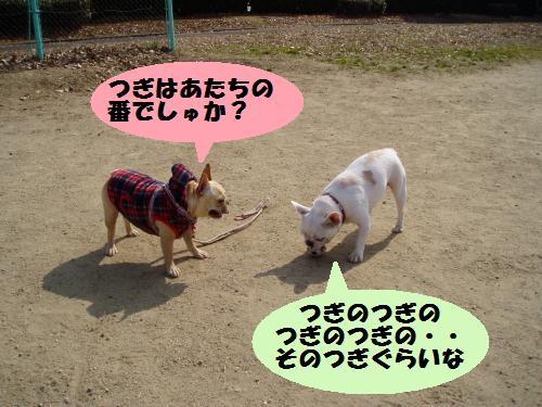 015_convert_20110208181257.jpg
