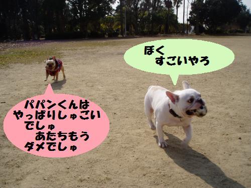 016_convert_20110208181334.jpg