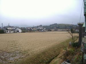 2011_0122kyou.jpg