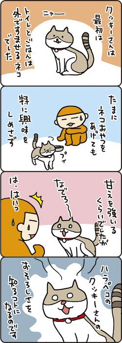 cookie001_6.jpg
