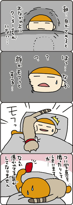 cookie001_7.jpg