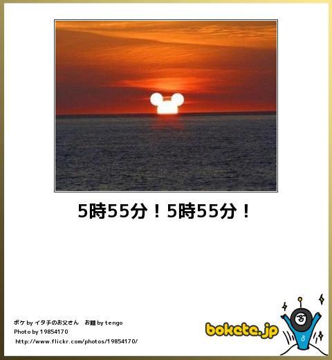 5290105.jpg