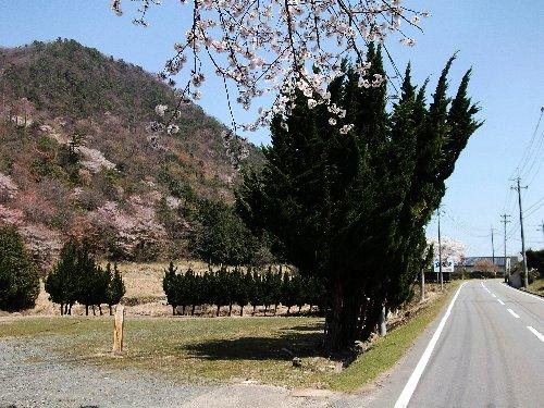 8竹田町2