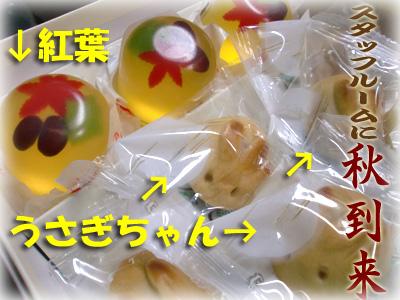 秋キター1