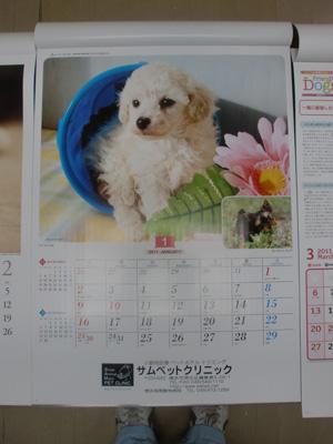 サムカレンダー/綱島・日吉動物病院/サムペットクリニック