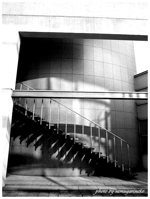 階段である