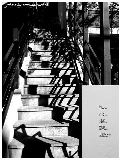 光と影が交差した階段