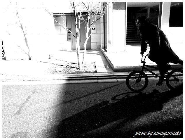 駆け抜ける自転車