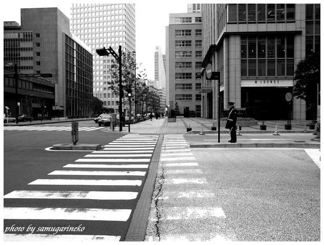 横断歩道です