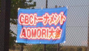 CIMG32452014 gbc