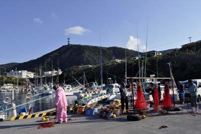 2011-11-17-9320.jpg
