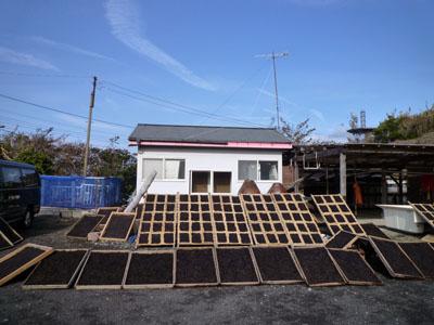 2012-01-18-1080053.jpg