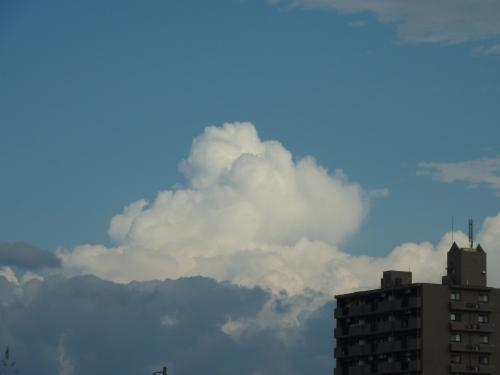 暑そうな雲