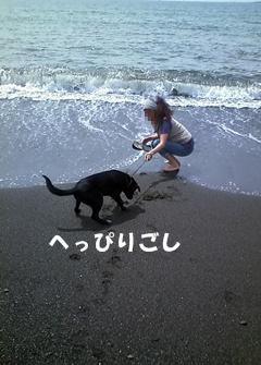★CA3B0041