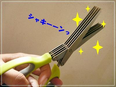 ◆P1100683