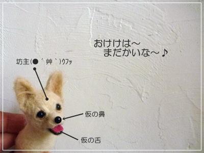 ○P1150057