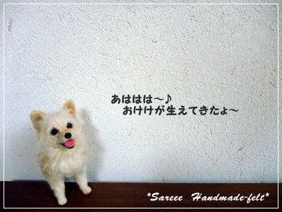 ◆P1150235