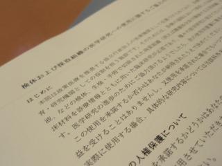 P9153388.jpg