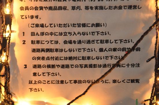 6_20110316182442.jpg