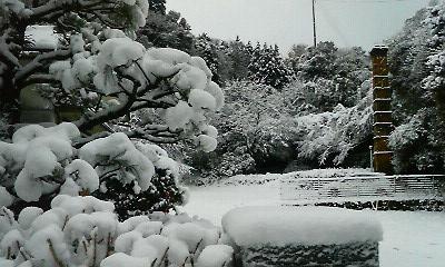 白い一日1(2010.12.31)