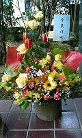 お花2(今泉洋子様より)