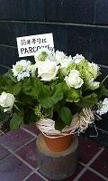 お花3(PARCO出版様より)