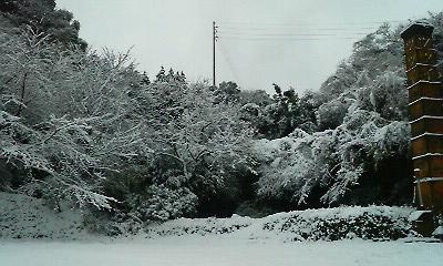 師走の雪1(2010.12.26)