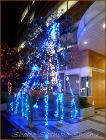20131220 夜 4 早稲田イルミネーション
