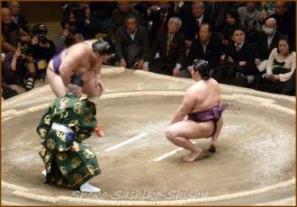 20140122 制限前 4 お相撲