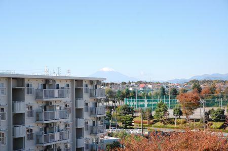 20141115fuji.jpg