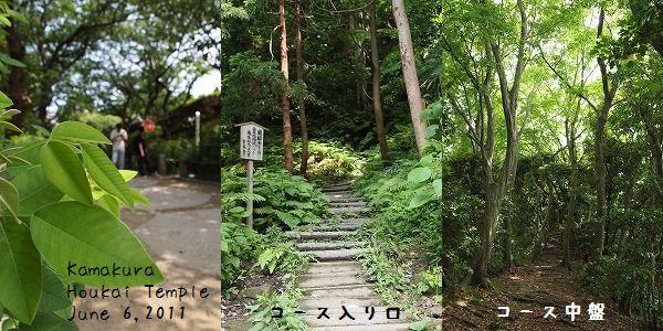kama_hi3.jpg