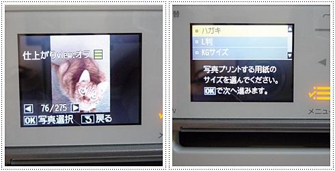 sayomaru2-201.jpg