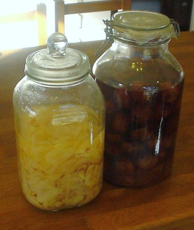 甘酢生姜と梅干