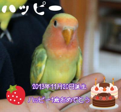 ハッピーお誕生日おめでとう