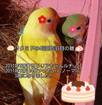 リリア・ナナちゃんお誕生日おめでとう