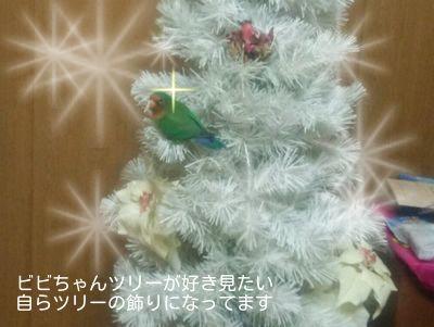 ホワイトクリスマスjrfGfEwGl5itSLO1419238380_1419238616
