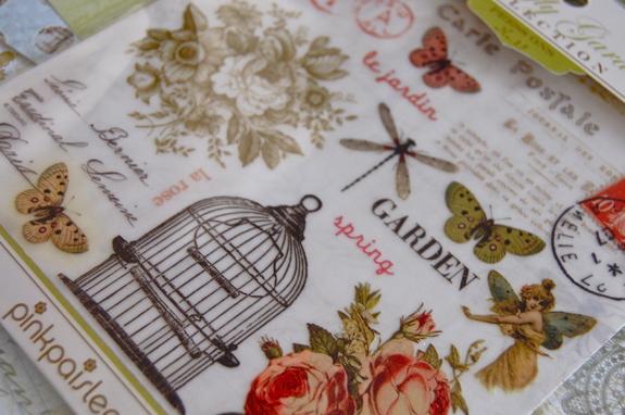 butterflyn_1-1.jpg