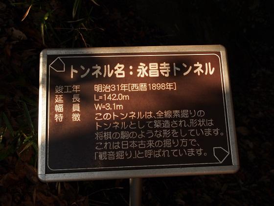 XC210032.jpg