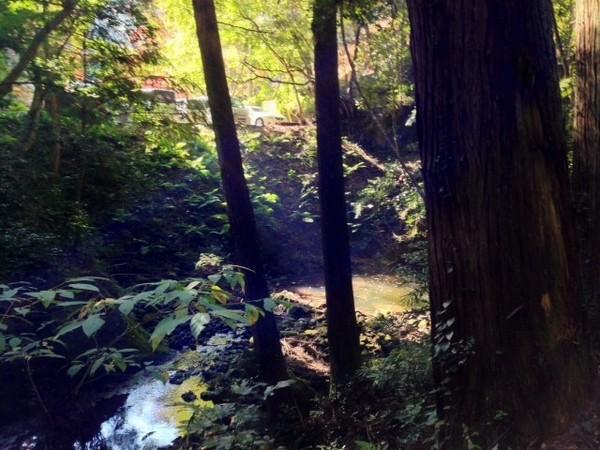 小松寺 参道からの小川の風景_JALAN_141123