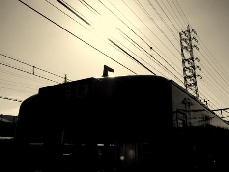 IMG_9905-21.jpg