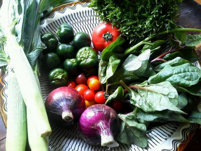 野菜0607