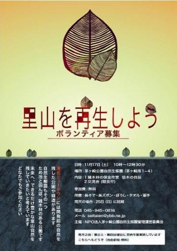 菫晏・_convert_20121117185813