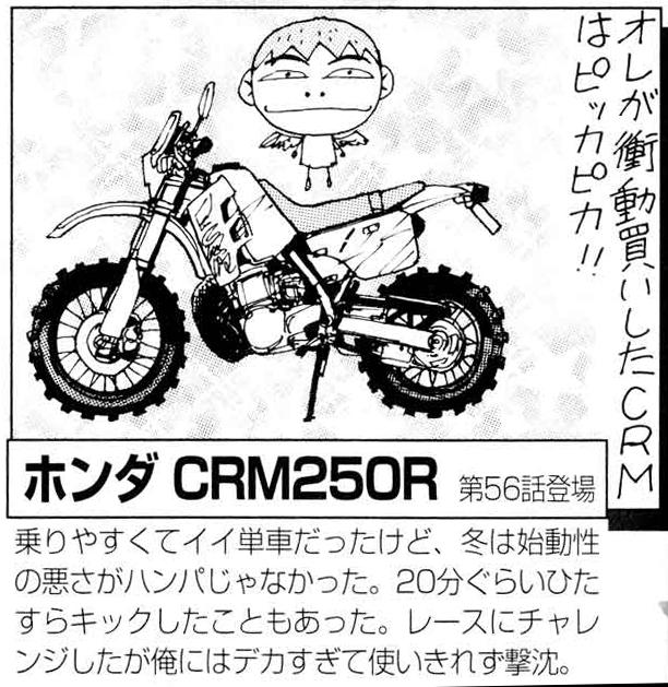 CRM1.jpg